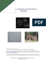 complejidad_y_gestion.pdf