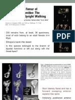 Presentación Ardipithecus ramidus.pdf