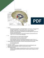 hipotalamusul.pdf
