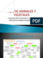TEJIDOS ANIMALES Y VEGETALES.pptx