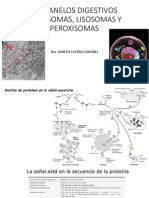 ORGANELOS DIGESTIVOSpdf.pdf