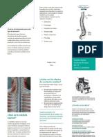 Lesiones de la médula espinal.docx