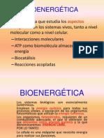 BIOENERGÉTICA 2014-1.ppt
