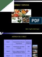 MODULO_DE_HIERBAS_Y_ESPECIAS.ppt