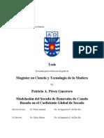 perez_p.pdf