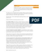 Cócteles cubanos e internacionales.doc