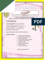 ACTIVIDAD PRIMERA-IDENTIFICACION DEL PROBLEMA..pdf