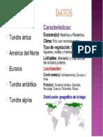 LA FAUNA DE LA TUNDRA - ambiente.docx