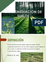BIORREMEDIACION DE SUELOS.pptx