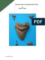 sharktoothKey.pdf