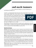 Head Neck Tumor