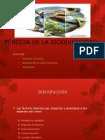 PÉRDIDA DE LA BIODIVERSIDAD.pptx