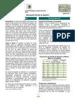 MonografíaSemillaAlgodón(ago11).pdf