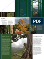 SPANISH_brochure_2011.pdf