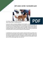 vacunacion canina.doc