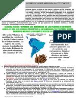aricoma02.pdf