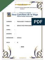 ENSAYO SOBRE TEST PSICOLOGICO - NO APARECE EN LA HOJA EL NOMBRE DEL CURSO.docx