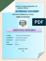 OBSERVACION PSICOLOGICA.docx