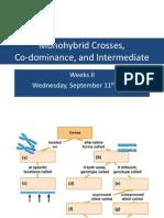 Genetics 2nd Weeks, Monohybrid Crosses