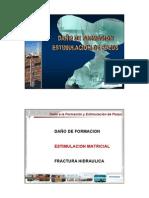 2.0 Estimulación Matricial.pdf