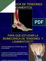 5.TENDONES  Y LIGAMENTOS.pdf