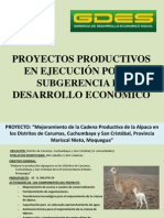 PROYECTOS PRODUCTIVOS_1.ppt