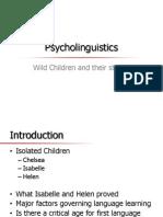 Psycholing Present.pptx