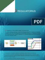 PID reguliatoriaus prezentacija