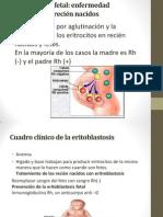 Eritoblastosis fetal.pptx