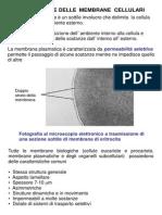 6 - Membrana Biologica (1)