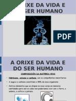 A ORIXE DA VIDA.odp