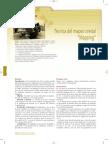 MAPEO OSEO.pdf