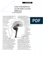 apuntesvfneurociencias.pdf