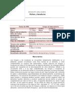 informe de mohos y levaduras.doc