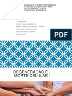 Patologia - esteatose railana.pptx