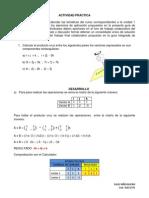 Ejercicios_RAUL_NINO-1.pdf