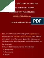 CLASE 23  PSEUDOMONA Y BACTEROIDES (ANAEROBIOS).ppt