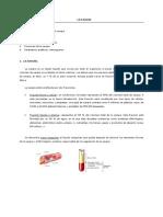 FISIOLOGÍA DE LA SANGRE.docx