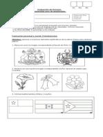 Evaluación de Proceso Septiembre pre kinder.docx