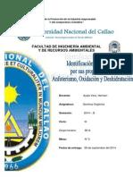 INFORME DE ALCOHOLES.docx