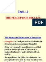5. the Perception Process
