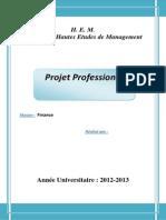 Projet Professionnel.docx