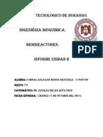 Biorreactores Unidad II 2.pdf