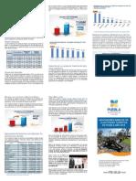 indicadores_turisticos_puebla_2013.pdf