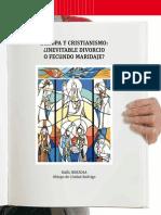 VN2889_pliego - Europa y cristianismo.pdf
