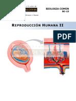 Reproducción Humana II.pdf