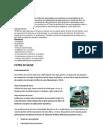 FILTRO DE BANDEJA.docx