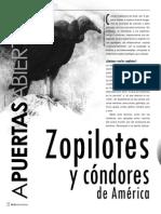 zopilotes.pdf