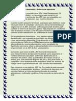 Kit de desarrollo y Entorno de ejecución.docx