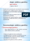 Fenomenologia estatica y genetica 2013.pptx